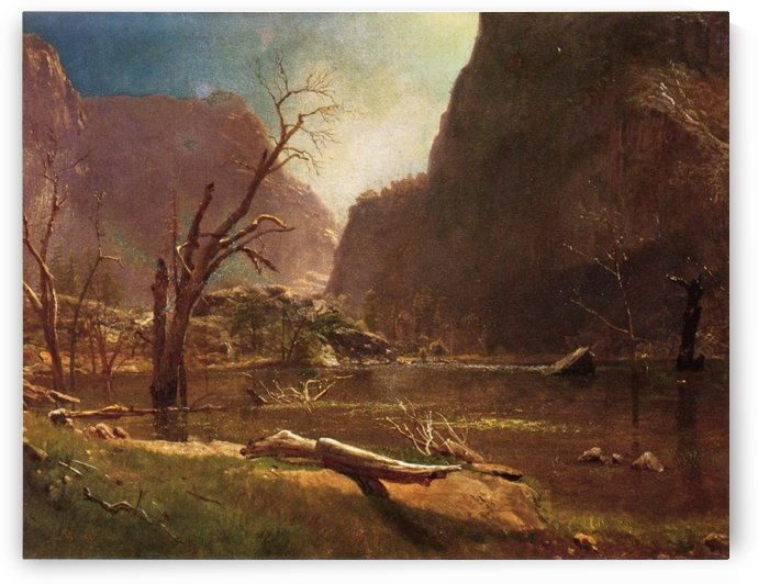 Hatch Hatchy Valley, California by Albert Bierstadt
