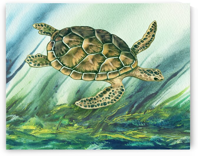 Watercolor Giant Turtle In Abstract Seaweed And Water X by Irina Sztukowski