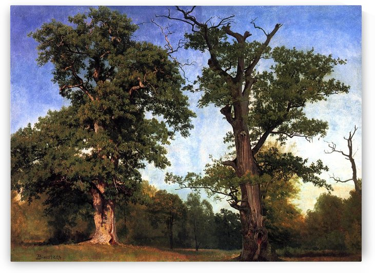 Pioneers of the Woods by Albert Bierstadt