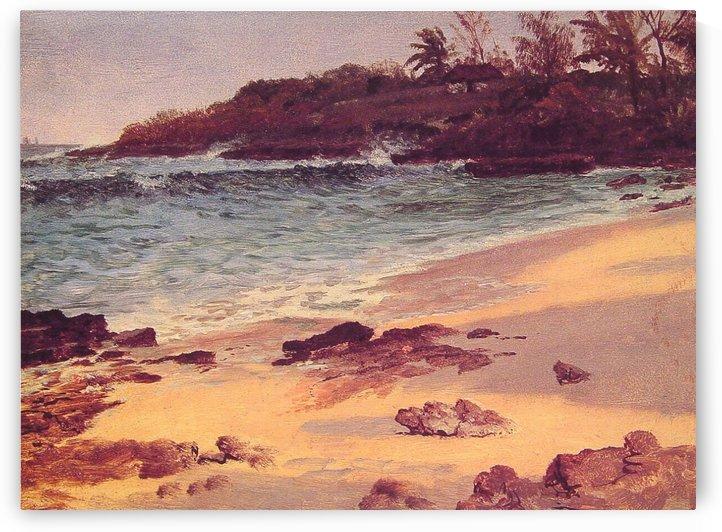 Bahama Cove by Albert Bierstadt