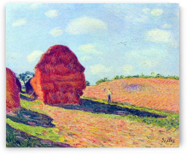 The straw rents by Sisley by Sisley