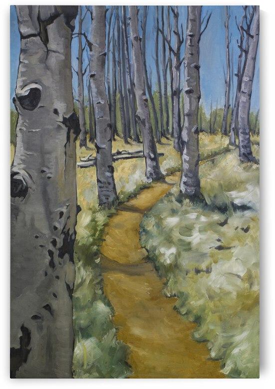 Kachina Trail by Cathy Colson