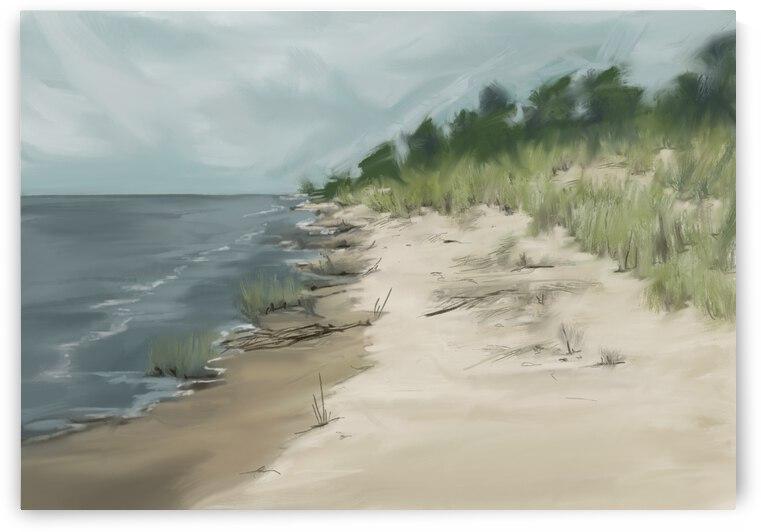 Mt McSauba Beach by Cathy Colson