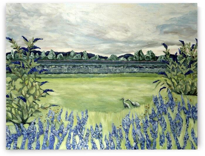 Lavender Fields by Deborah Alastra