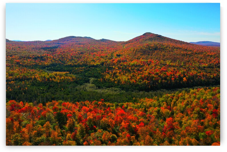 Fall in the Adirondacks  by Jerrid Lavoie