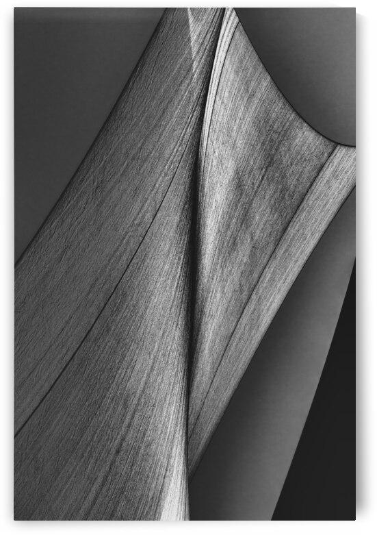 Abstract Sailcloth 14 by Bob Orsillo