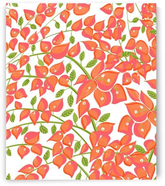 Bougainvillea Blush by 83 Oranges