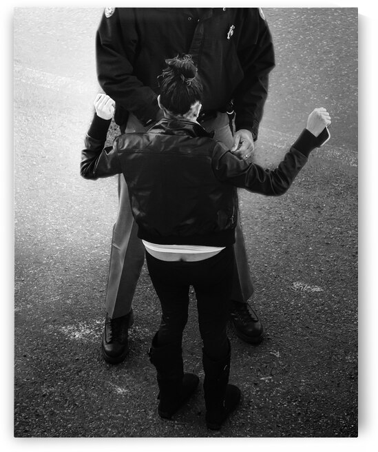 Detain and Search 2 by Bob Orsillo