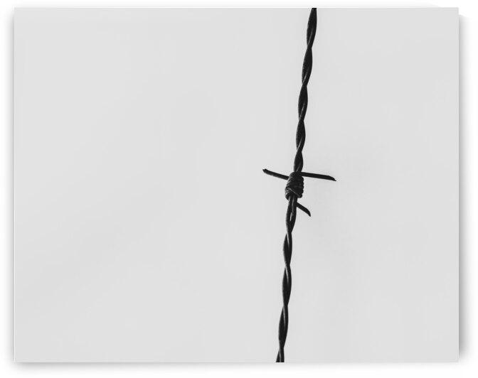 Simple Twist Of Wire by Bob Orsillo