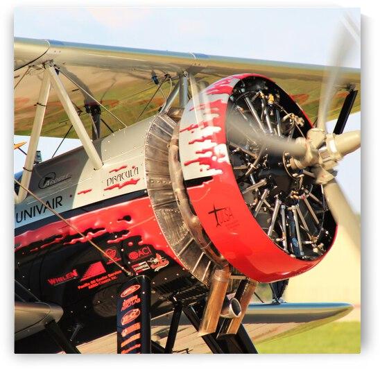 Dracula Biplane Radial Engine Airplane by Cameron Wilson Photos