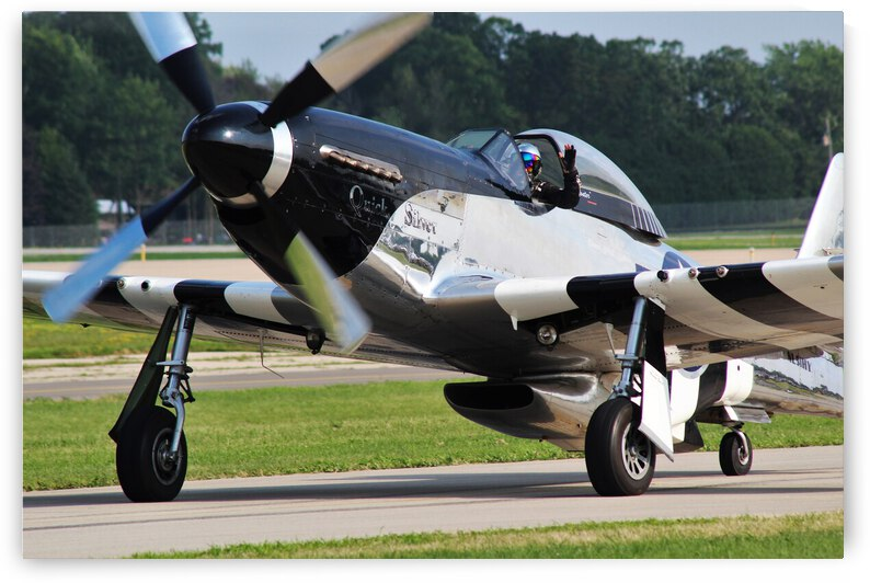 P51 Mustang Airplane by Cameron Wilson Photos