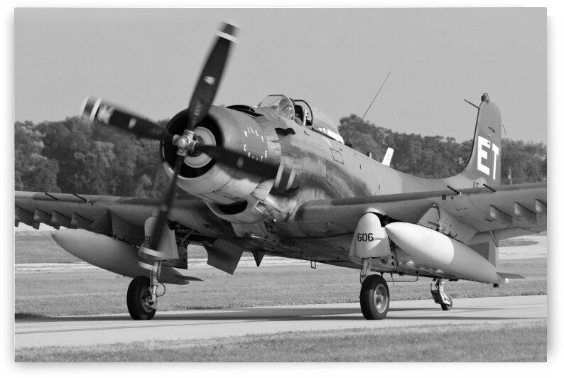 Douglas A-1 Skyraider Airplane by Cameron Wilson Photos