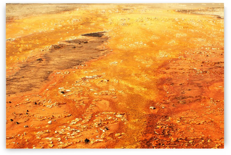 Yellowstone Mineral Pool Orange by Cameron Wilson Photos