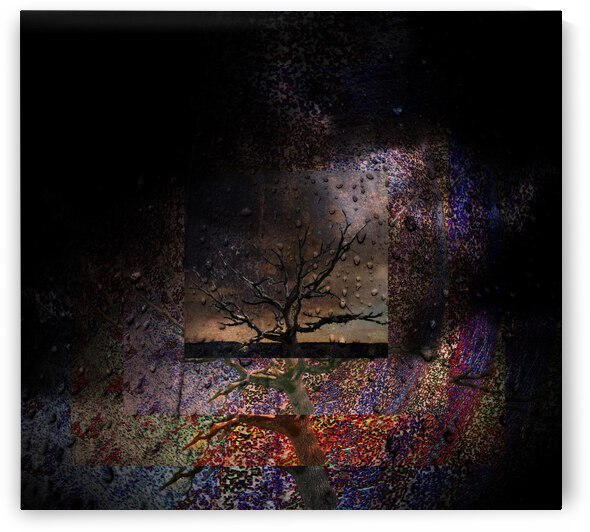 Tree Layers 1 by Dorothy Berry-Lound