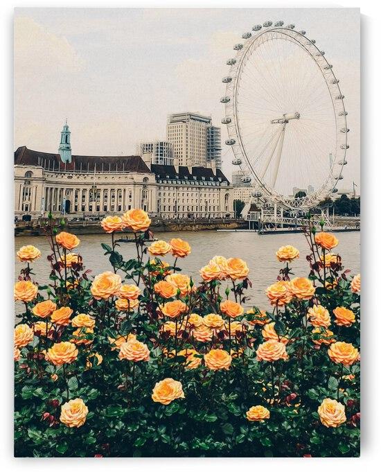 Peach roses on the background of London.  by Ievgeniia Bidiuk
