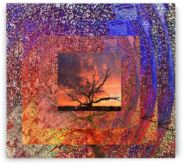 Tree Layers 2 by Dorothy Berry-Lound