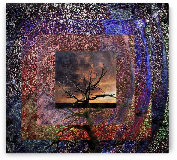 Tree Layers 4 by Dorothy Berry-Lound