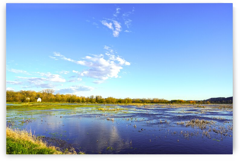Beautiful Day at the Estuary by 360 Studios