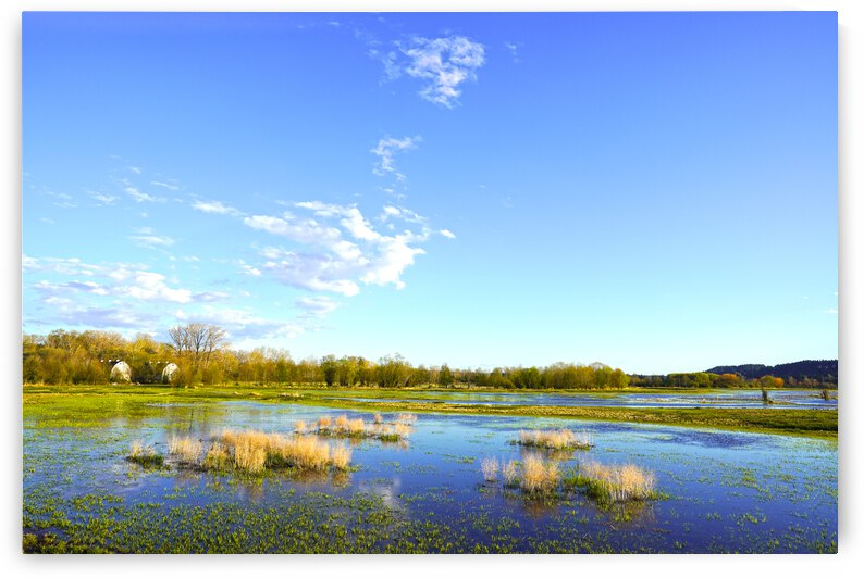 Beautiful Day at the Estuary 2 by 360 Studios