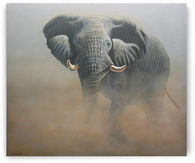 Another African Legend by Joe Marais