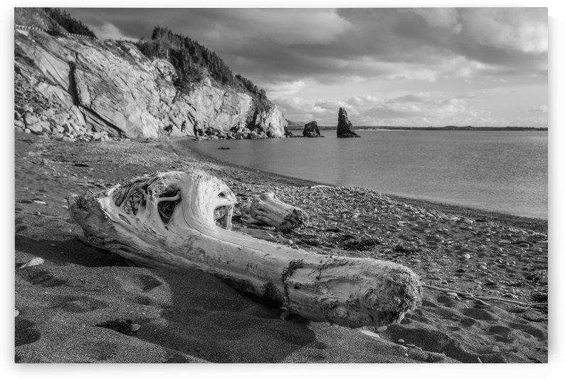 La Presqu'ile in black and white by Michel Soucy