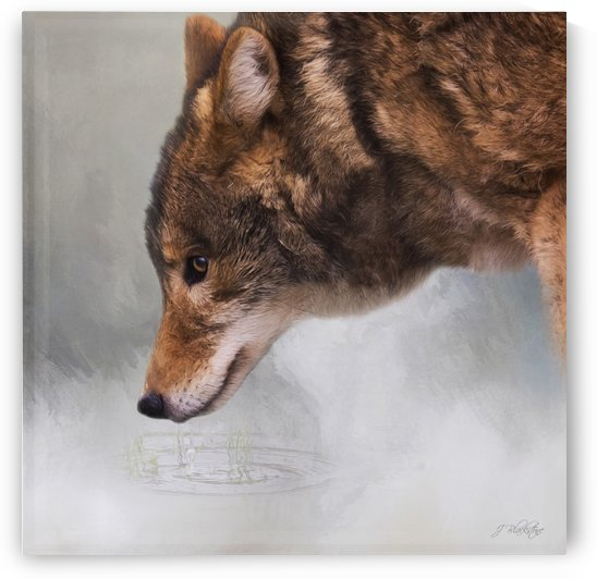 Time To Breathe - Wolf Art by Jordan Blackstone by Jordan Blackstone