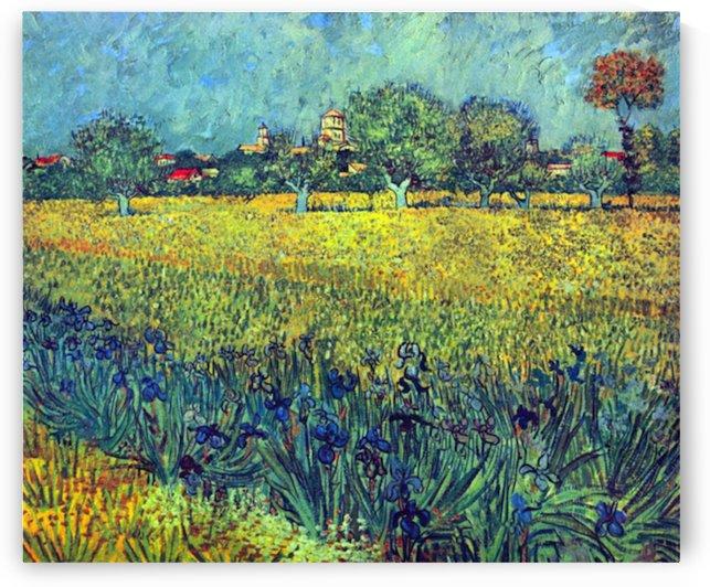 View of Arles with irises by Van Gogh by Van Gogh