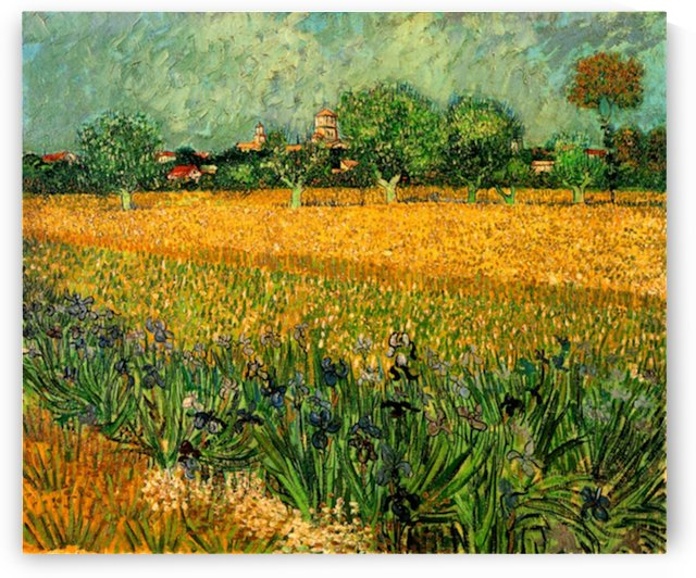 View of Arles with Irises in the Foreground by Van Gogh by Van Gogh