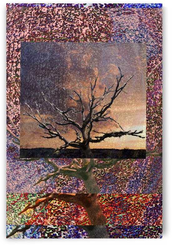 Tree Layers 5 by Dorothy Berry-Lound