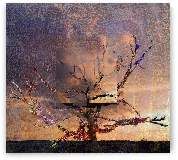 Tree Layers 6 by Dorothy Berry-Lound