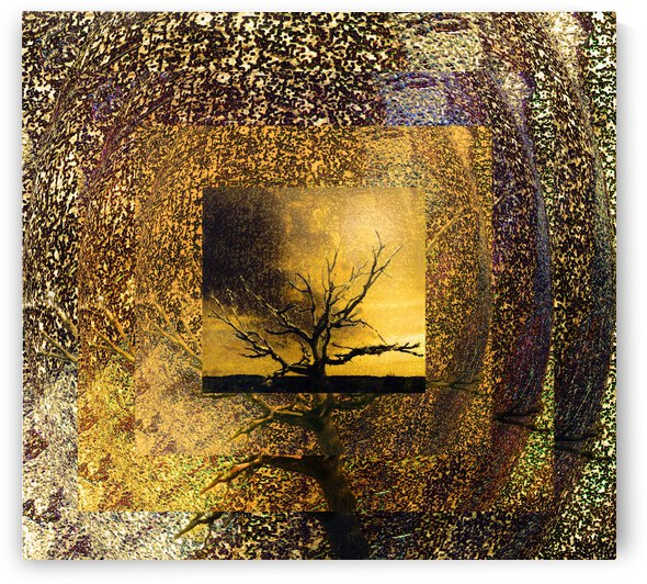 Tree Layers 7 by Dorothy Berry-Lound