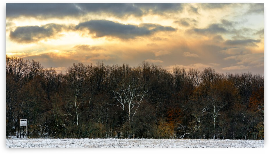 Touch of Winter by Balint T Kertesz