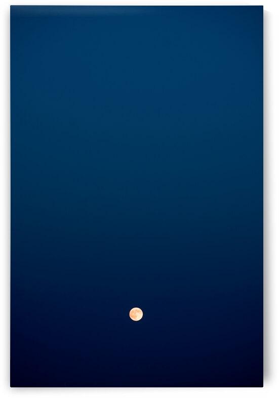 Nightfall by Balint T Kertesz