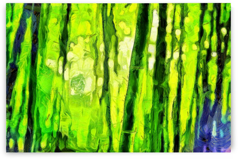 Bamboo forest oil painting inVincent Willem van Gogh style.  This is an art print not the original. 3 by ArtEastWest