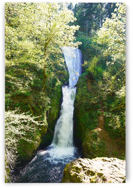Falls in The Gorge 2   Columbia River Oregon - Waterfall Pacific Northwest USA  by 1North