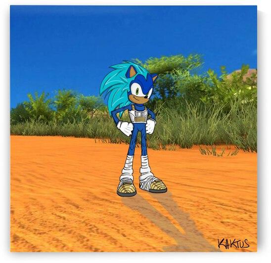 Sonic en Vegeta by Kaktus Art