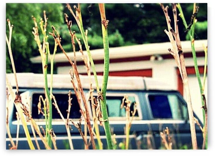 Van Life by J Gilbert Photography