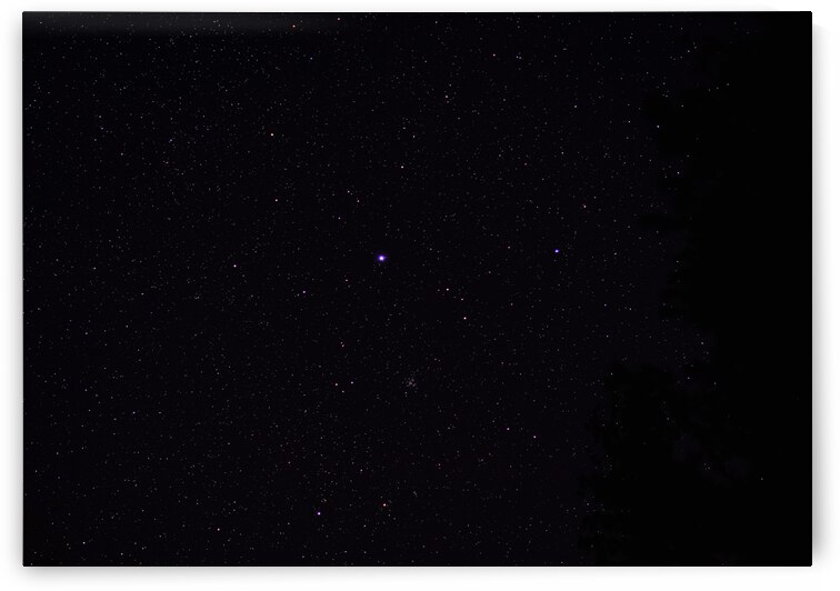 The Greater Dog Constellation  by J Gilbert Photography