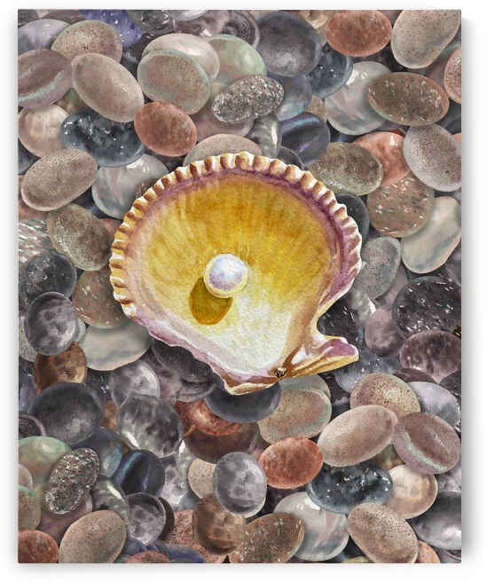 Rock And Seashell Collection Watercolor Painting Beach Rocks II by Irina Sztukowski