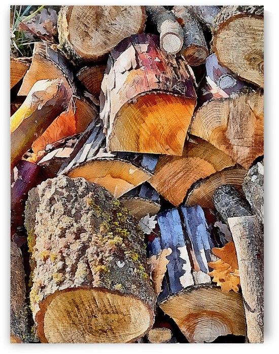 Log Pile Seasoning 1 by Dorothy Berry-Lound
