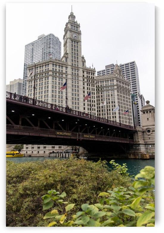 Wrigley Building Chicago by Ashley ML Studios