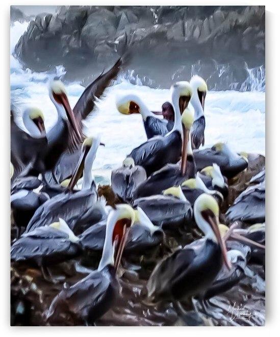 Pelicans on the Sea by Michael Stephen Dikovitsky