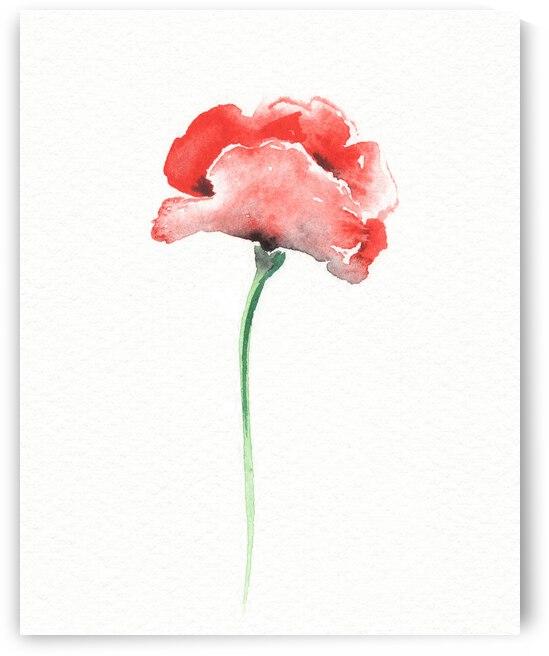Graceful Beauty Botanical Watercolor Red Poppy Flower II by Irina Sztukowski