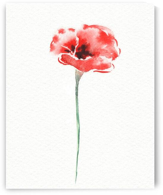 Graceful Beauty Botanical Watercolor Red Poppy Flower III by Irina Sztukowski