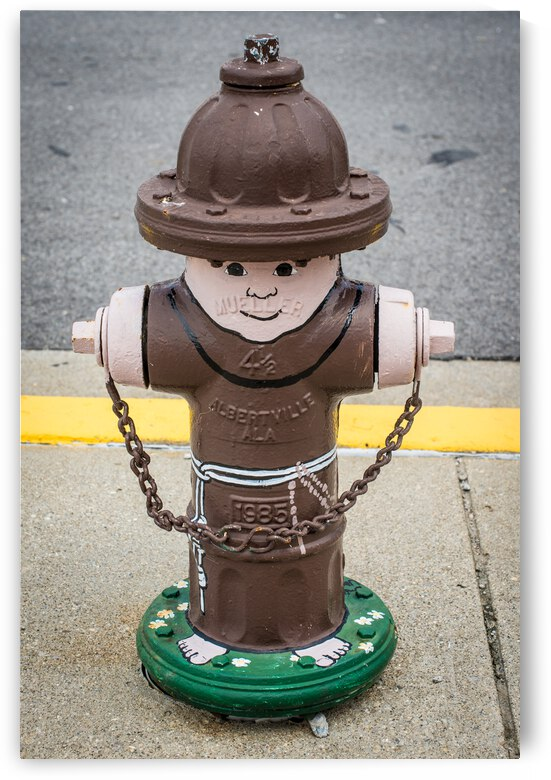 Monk Painted Fire Hydrant - Indiana by Gary Whitton