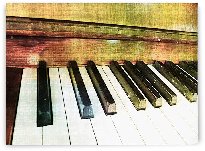 Piano Keys Study by Dorothy Berry-Lound