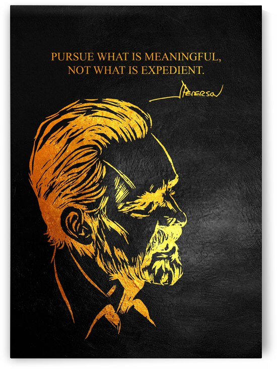 Pursue Meaning Jordan Peterson Motivational Wall Art by ABConcepts