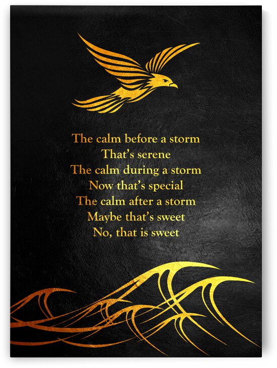 Storm Dove Motivational Wall Art by ABConcepts