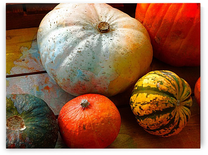 Sumptuous Squash by Dorothy Berry-Lound