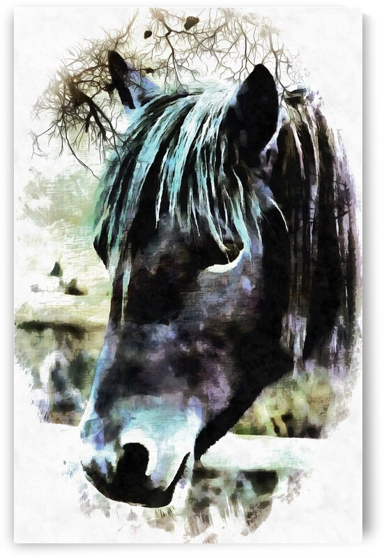 Horse Spirit Guide by Dorothy Berry-Lound